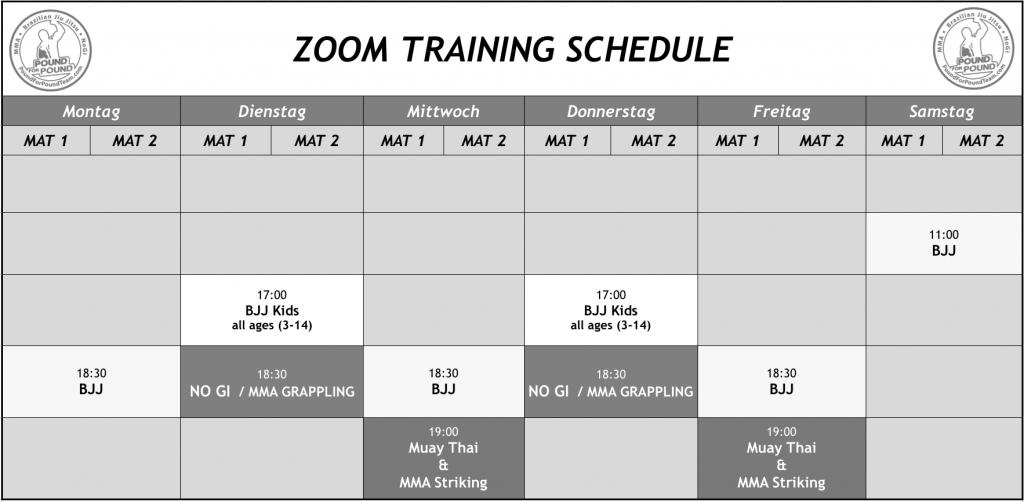 Zoom Training Stundenplan